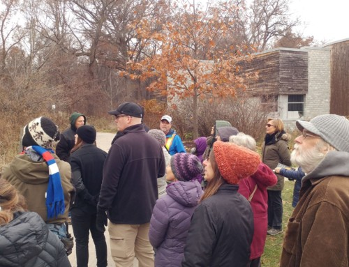 Fall Tree Identification Walk