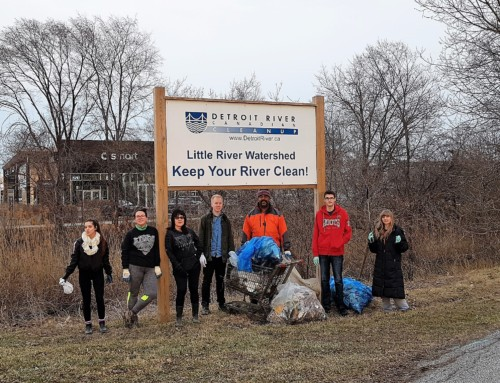 Little River Spring Cleanup Event 2019