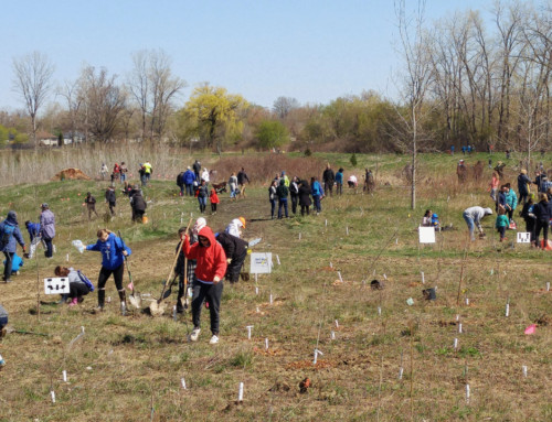 Earth Day 2019 Planting Event